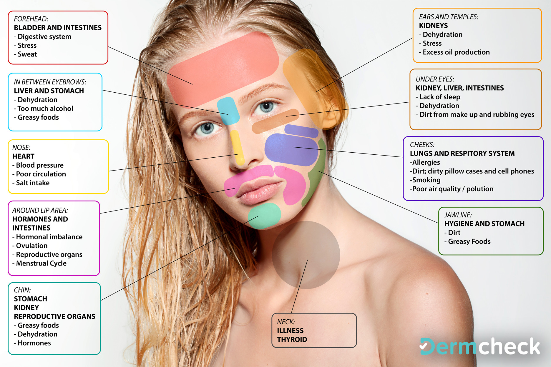 Chinese Face Map Reveals What Part Of Your Body Is Sick And How To